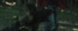 Denzel Entity.PNG