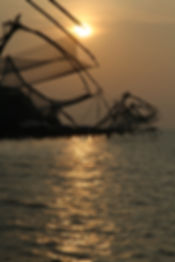 444 - Chinese fishing nets, Cochin, Indi