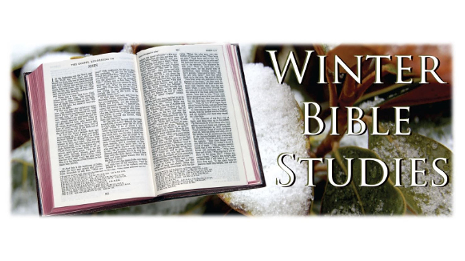 Winter Bible Studies