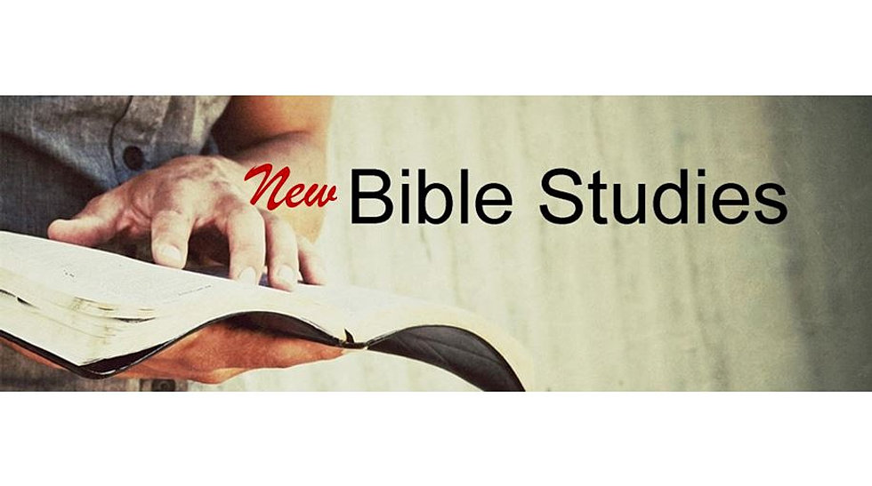 New Bible Studies