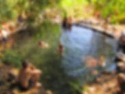Ein Amphi.jpg