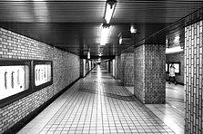 Tokyo Metro Underground