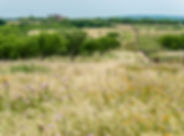 Flying M Ranch-Landscape-web-127.jpg