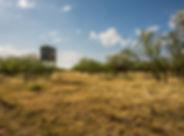 Comanche Crest Ranch-landscape-web-67.jp
