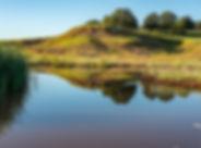 Little Whichita River Ranch-landscape-we