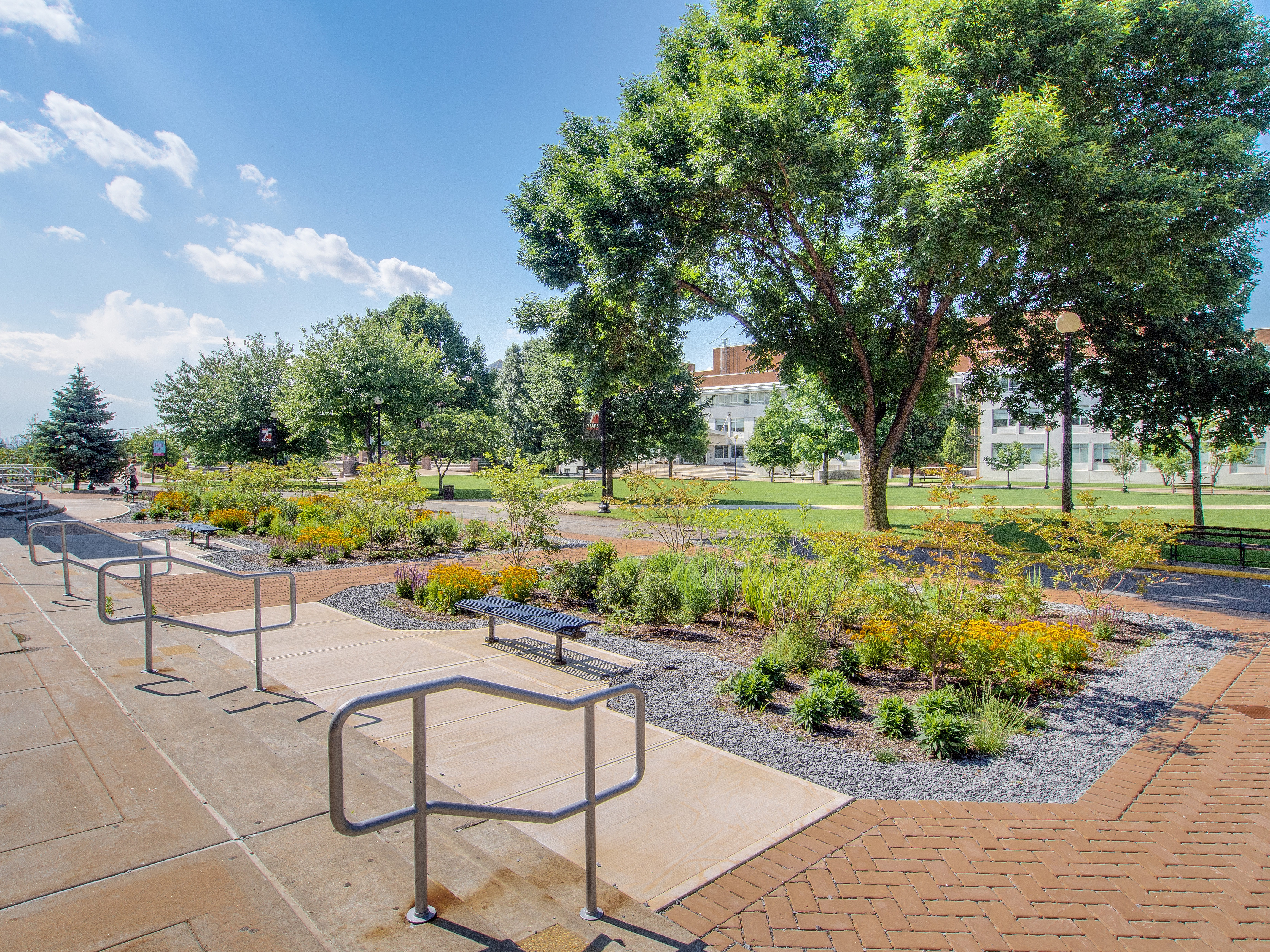 Queens ny college basketball scores for Landscape architecture adelaide uni