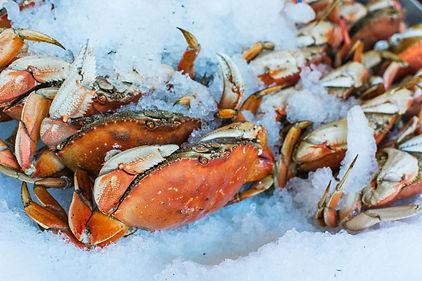 sea-crab-at-fish-market-QJ8ELBT.jpg