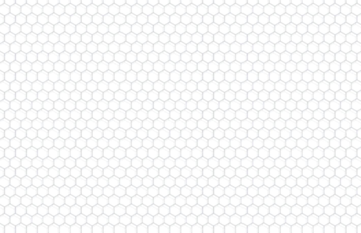 Hexagon-11x-17_edited.jpg