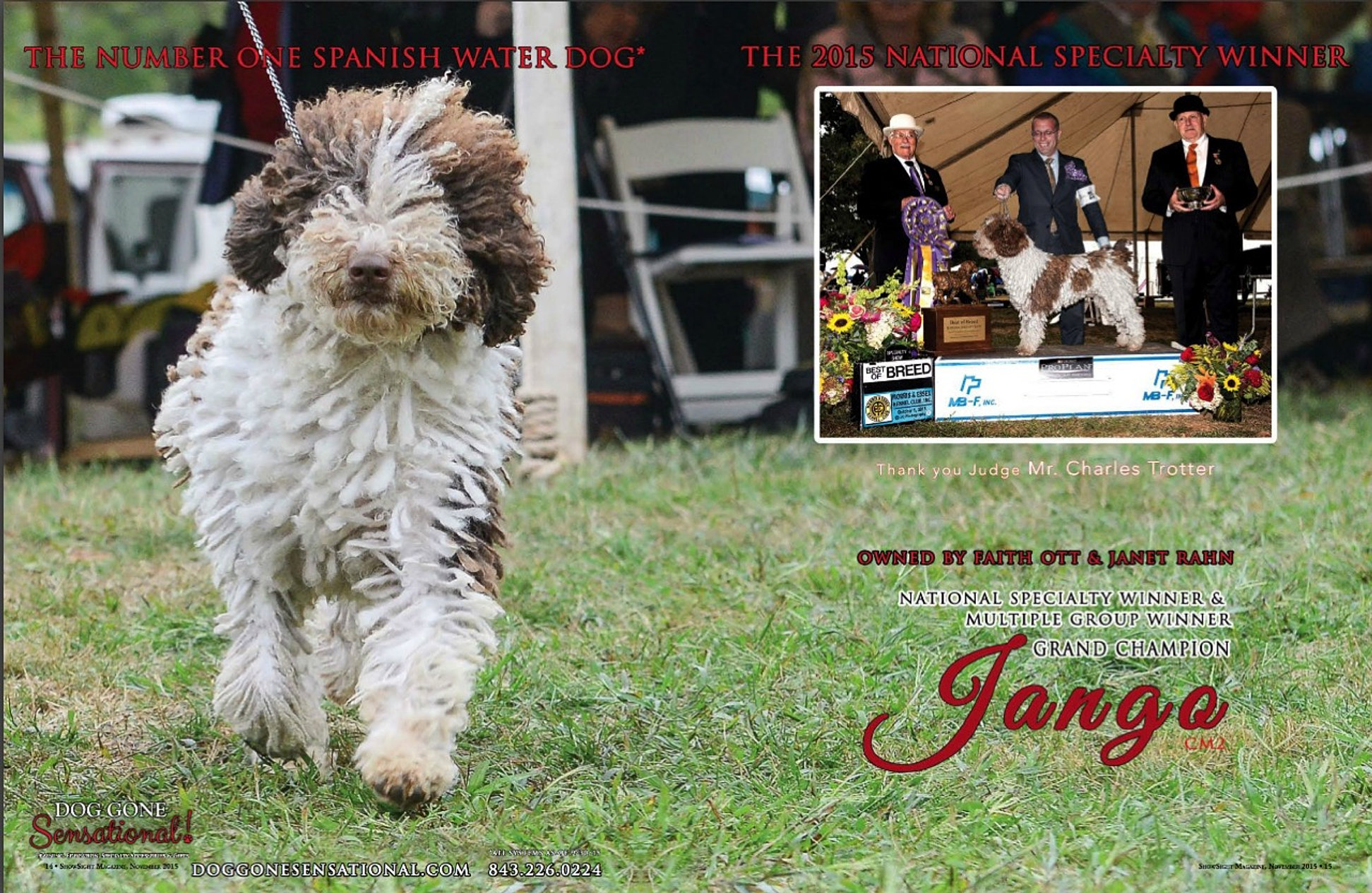 ShowSight - The Dog Show Magazine