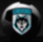 wsc logo _edited.png
