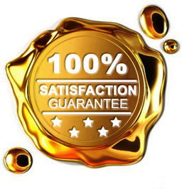 satisfaction (2).png