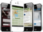 Mobile app Developers: Digital Earth Network, DEN