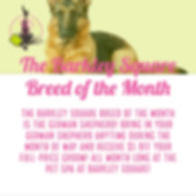 Breed of the Month May 2020.jpg