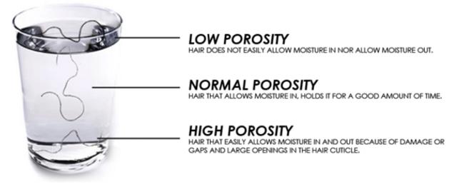 hair porosity test 2 .png