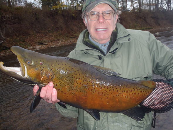 Fishing report 7 2 18 carl coleman 39 s fly shop fly for Oak orchard fishing report