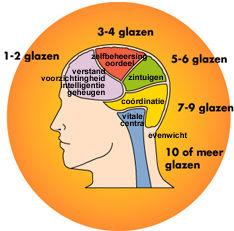 effect alcohol op hersenen