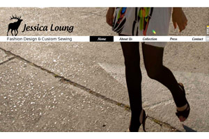 The Fashion Lounge Template - Urban fashionistas will love this design. It's simple, yet has just the touch of corporate style it needs to display your collection. Customize everything from colors to gallery selections and see your collection come alive.