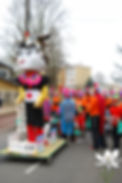 Carnaval crocus blanc