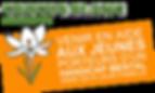 crocus blanc handicap bouffémont