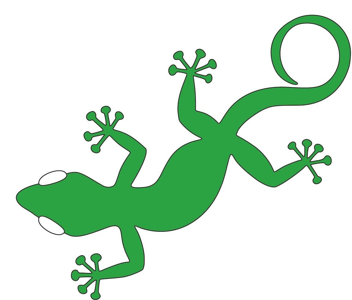 Stephanie Alexander Kitchen Garden Foundation School Gardens Green Gecko Studios