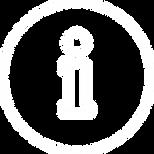 ms electro controle - icon expertise