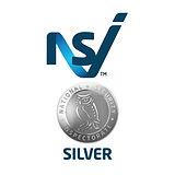 NSI_Silver.jpg