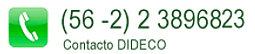 CONTACTO DIDECO2.jpg