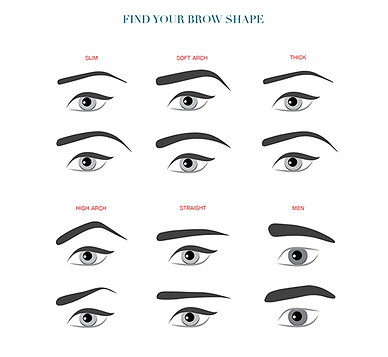 find your brow shape - Coloration Sourcil