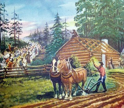 the native american trail of tears essay The trail of tears stands for one of the most tragic periods in the history of the us  it was the beginning of extermination of indian tribe – the cherokee.