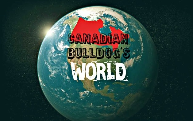 Canadian Bulldog's World