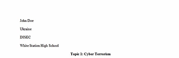 Setting the Agenda for Cyber Security  Cyber Crime and Cyber Terrorism  Research  Espion kicks Organize information in essay