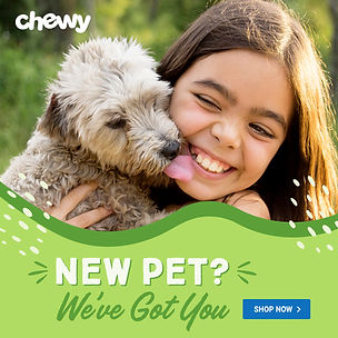 chewy ad.jpg