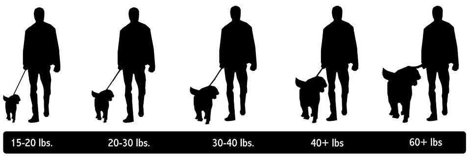 2021 Size Chart.jpg