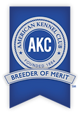 Breeder_of_Merit_Logo_2015_wShadow-210x3