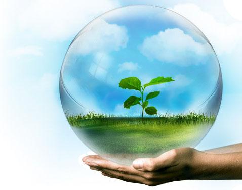 Certificado Aptitud Ambiental de Aptitud Ambiental a 10