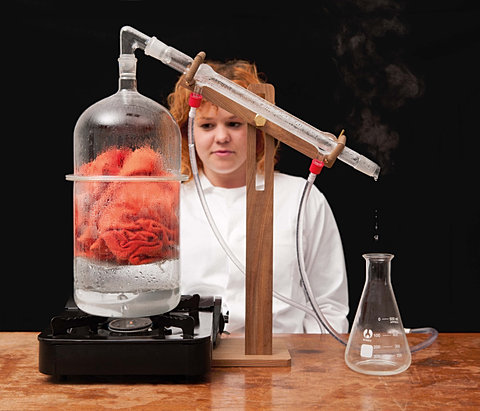 Scent Distilling kit