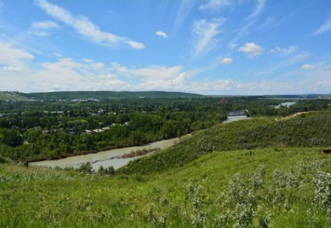 Silver-Spring-View-Bow-River.jpg