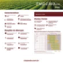 folder_variedades_soja-06.jpg