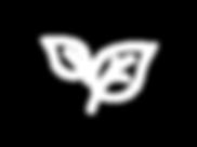 symbole eco bl.png
