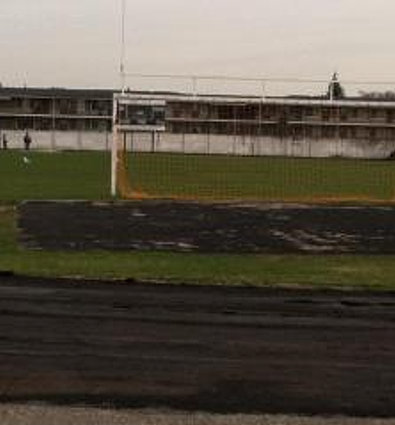The Beginning of the new field.jpg