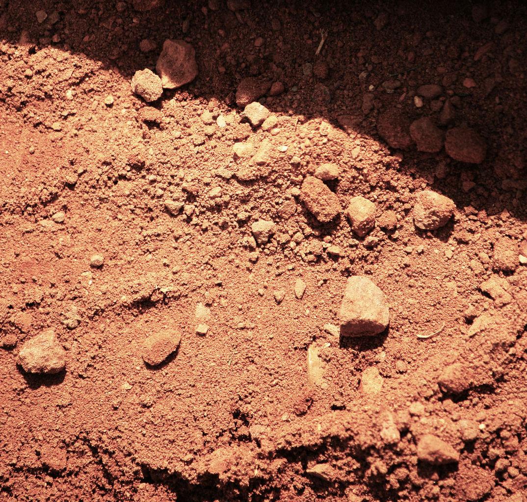 Rangers Ballpark Dirt