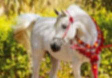 Familienplaner Pferdeglück 2020, März-Motiv