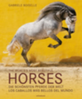 Buch - The World´s most beautiful Horses