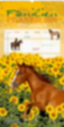Familienplaner Pferdeglück 2020 der Edition Boiselle