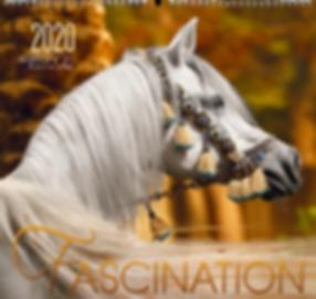 Kalender Fascination 2020 de Edition Boiselle