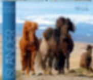 Kalender Isländer 2020