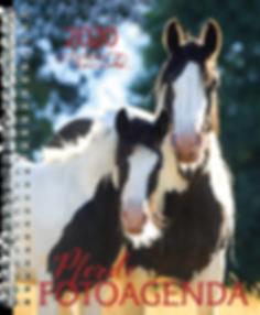 Pferde Fotoagenda 2020