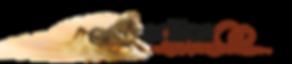 Edition-Boiselle-Logo.png