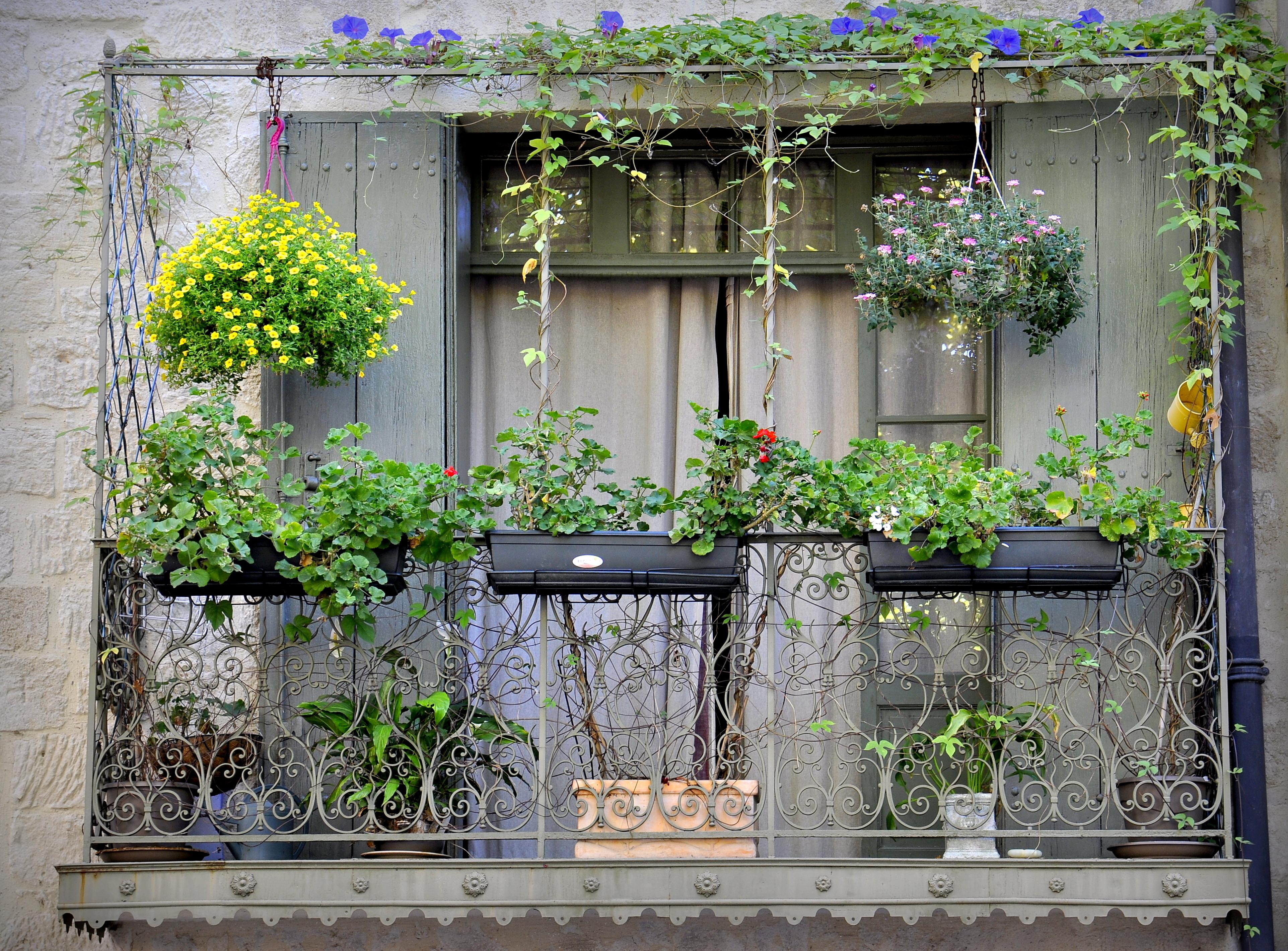Episode 3 jardiner sur son balcon notre s lection de jardini res et pots - Jardiner sur son balcon ...