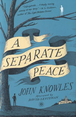 the transformation of phineas character in john knowles a separate peace A separate peace, by john knowles gene's journey begins the moment he pushes phineas from the tree and  character foils for a separate peace.